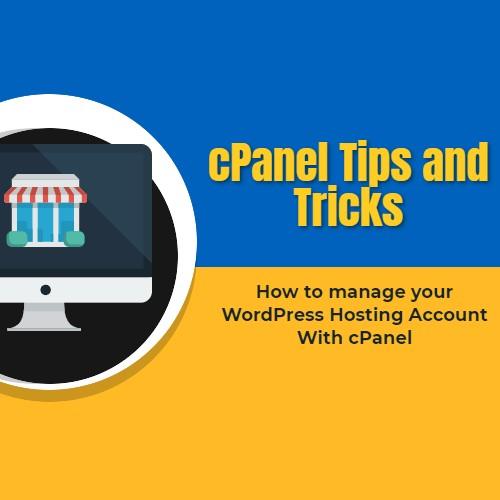 WordPress Hosting cPanel -